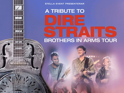 Picture of A Tribute to Dire Straits
