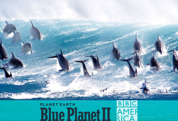 Picture of Blue planet II - Live in concert