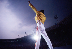 Picture of Freddie Forever