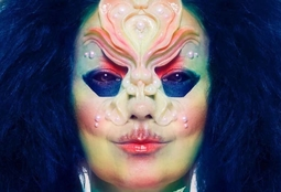 Picture of Björk